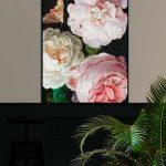 VanillaFly - Poster Rose